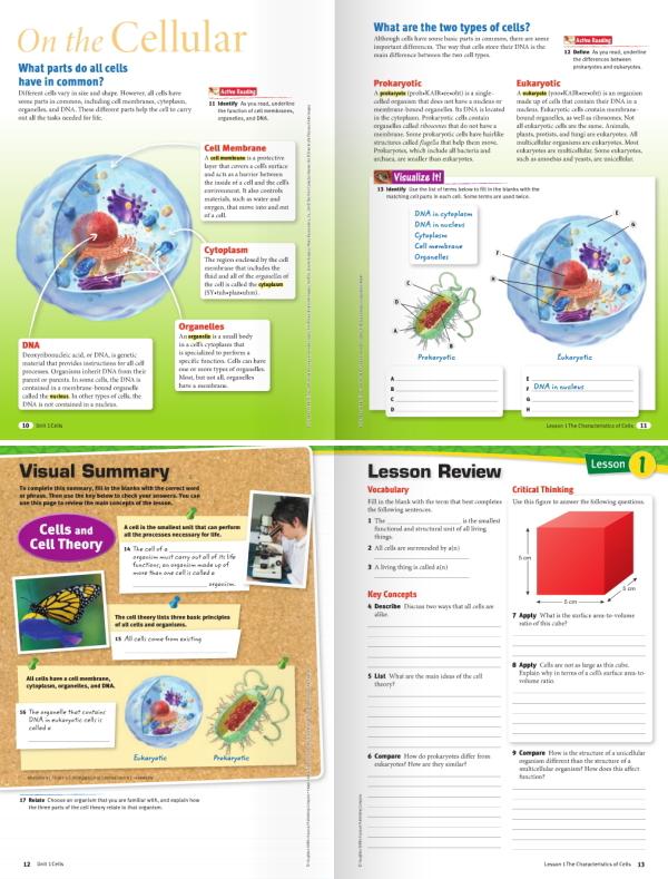 アメリカの小学校理科教科書